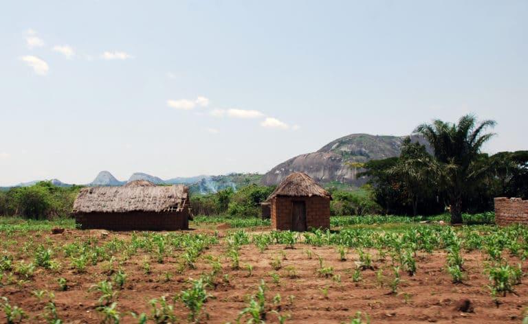 Landskapsbild över jordbruk